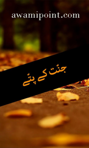 Jannat kay Pattay Novel in Urdu pdf free download jannat kay pattay Jannat kay Pattay Novel in Urdu pdf free download 2 182x300