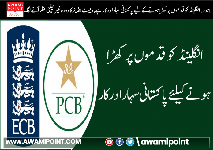 england-needs-pakistani-support-to-stand-on-its-own-two-feet (3)