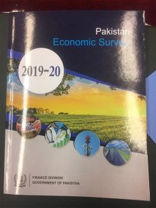 The National Economic Survey Report was presented to the Prime Minister  وزیراعظم کو قومی اقتصادی سروے رپورٹ پیش کردی گئی 37 225x300