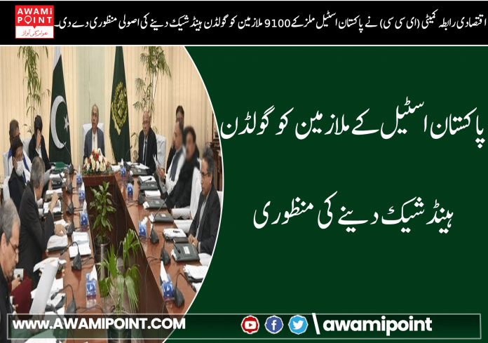 Approval to give Golden Handshake to Pakistan Steel employees